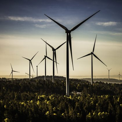 Wind power plants in the forests